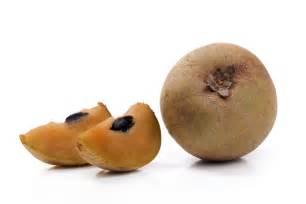 Sapota Fruit Tree - the health benefits of the sapodilla plant