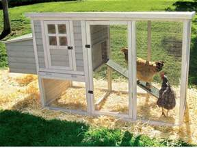 how to build a chicken coop a step by step guide on how