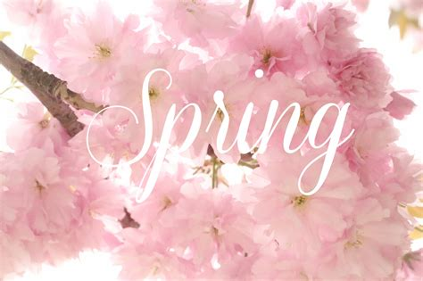 what is spring springtime pursuits