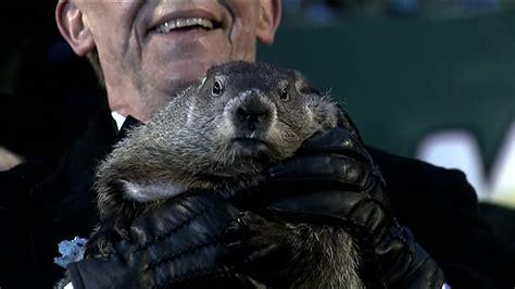 groundhog day 2015 groundhog day 2015 six more weeks of winter