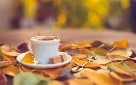 coffee autumn wallpaper coffee cup pictures 38723 1680x1050 px hdwallsource com
