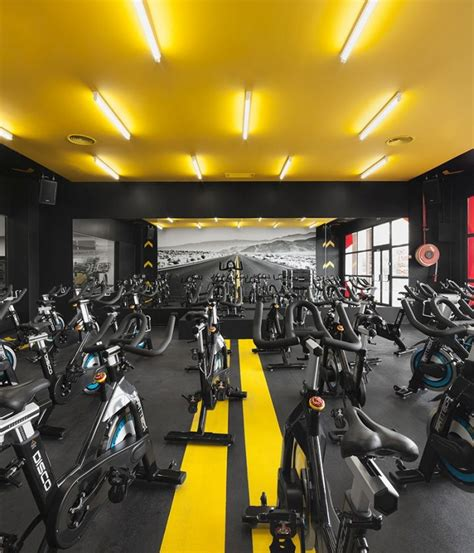 fitness room design 25 great ideas about design on basement