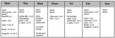sheiko bench program sheiko bench program sizing up sheiko a review of