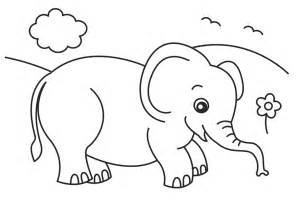 elephant color baby elephant coloring pages to and print for free