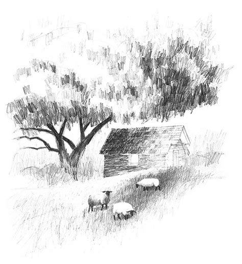 Sketches Grassy Land by Top 25 Ideas About Landscape Drawings On