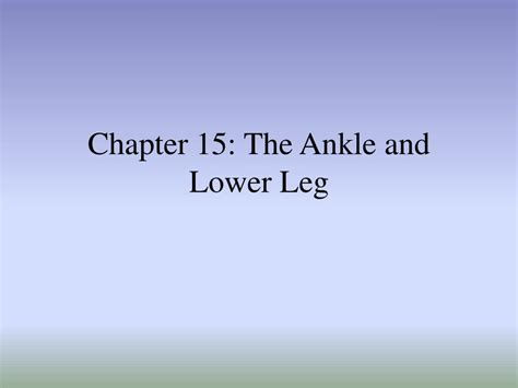 chapter ppt ppt chapter 15 the ankle and lower leg powerpoint presentation id 154025