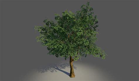 tutorial blender tree lowpoly tree by nosslak on deviantart