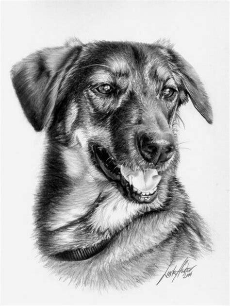 imagenes realistas de animales dibujos hechos a lapiz de perros imagui
