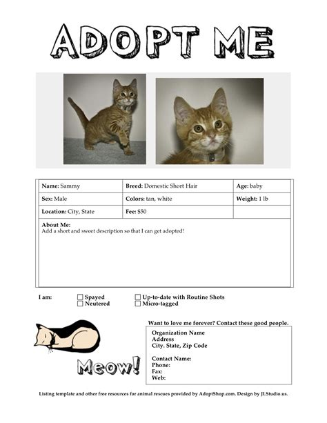 adoption flyer template meow wuff adoption flyer templates