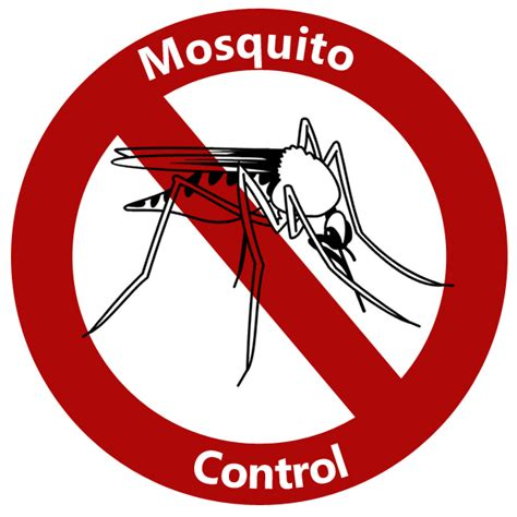 mosquito town of timnath