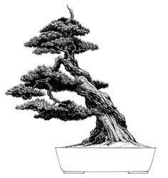 libro bonsai the art of bonsai tree artwork out of asheville nc the perfect gift idea as a poster or you can order it