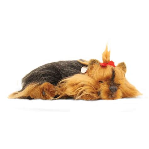 petzzz puppy terrier puppy by petzzz precious petzzz