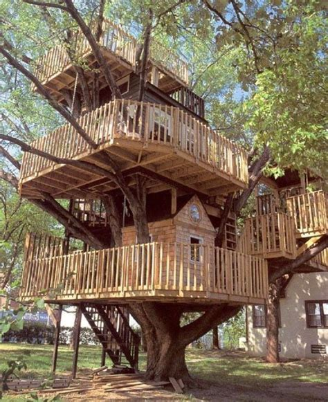 cool tree houses 10 unusual but interesting tree houses home design