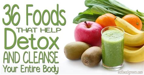 Foods That Help You Detox From by 36 Foods That Help Detox And Cleanse Your Entire