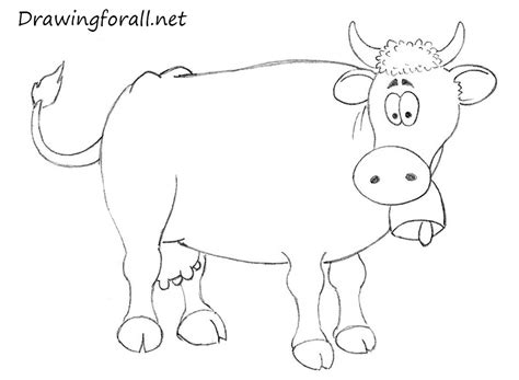how to a cow easy cow drawing www imgkid the image kid has it