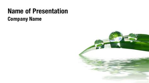grass in water powerpoint templates grass in water