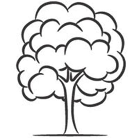 deciduous tree coloring page deciduous tree 187 coloring pages 187 surfnetkids