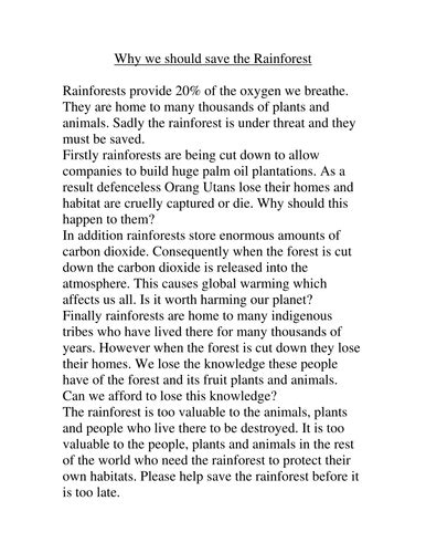 Of The Rainforest Essay by Save The Rainforest Essay Frudgereport683 Web Fc2
