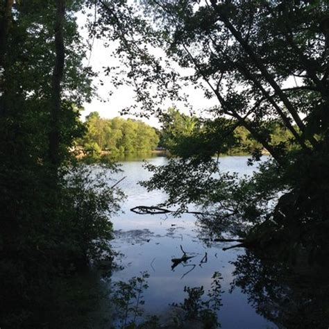 Parvin State Park Cabin Rentals by Parvin Lake Picture Of Parvin State Park Elmer