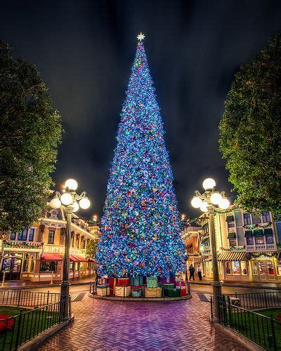 the disneyland christmas tree future travels pinterest