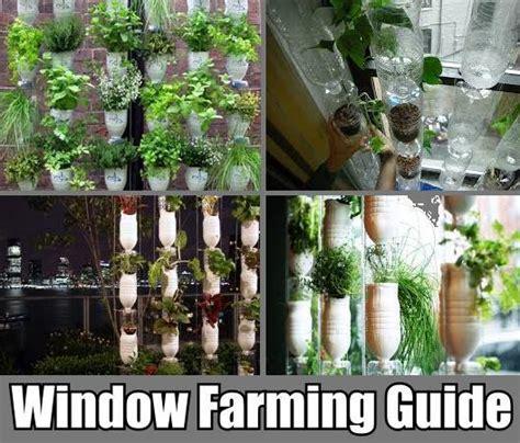 Vertical Window Garden Vertical Window Farming Tutorials Diy Cozy Home