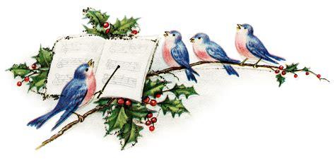 winsch birds new year postcard design shop singing birds new year postcard design shop