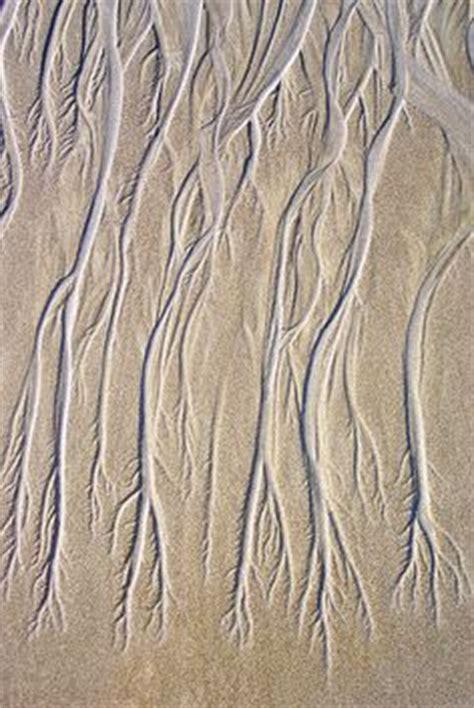 pattern explorer 4 5 crack tree bark peeling cracked texture inspiration organic