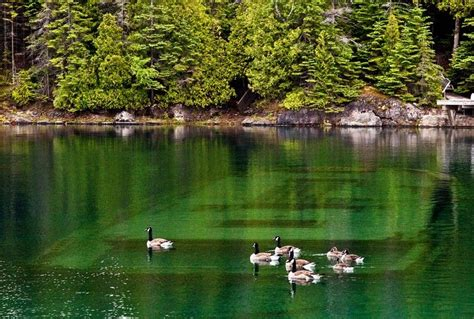 fish table sweepstakes near me shipwreck lake huron michigan most beautiful places in