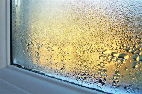 high humidity in bedroom does a dehumidifier raise room temperature allergyconsumerreview