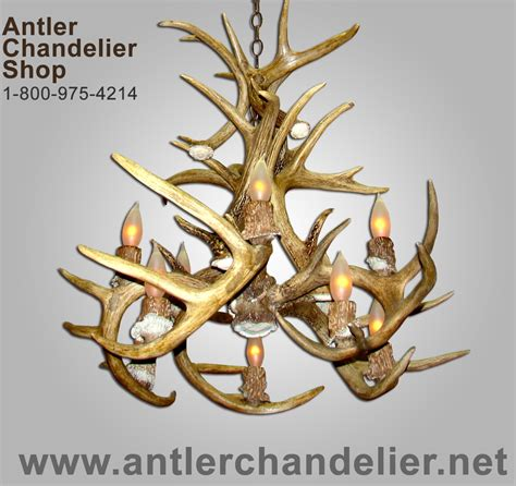 10 Light Inverted Real Antler Whitetail Deer Chandelier Antler Chandelier Shop