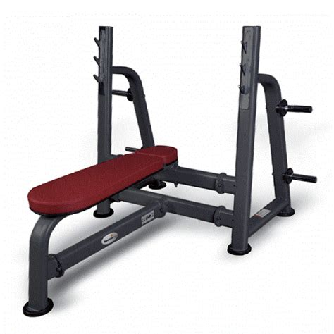 pro bench press hattrick pro rg 04 press bench