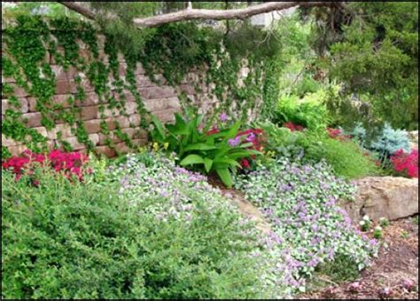 Landscape Fabric To Prevent Soil Erosion Landscaping A Slope Plants With Vigorous Root Systems To