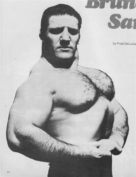 bruno sammartino bench press the tight tan slacks of dezso ban bruno sammartino fred