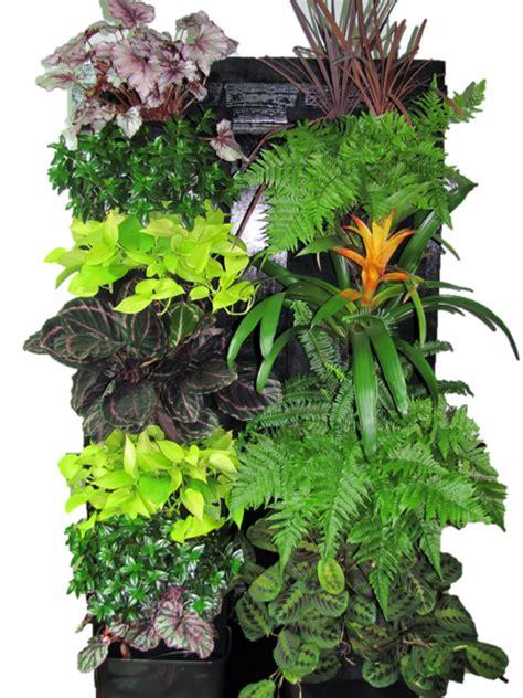 images  vertical garden indoor  pinterest
