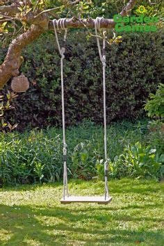 cool swings for trees 1000 images about tree swing on pinterest tree swings