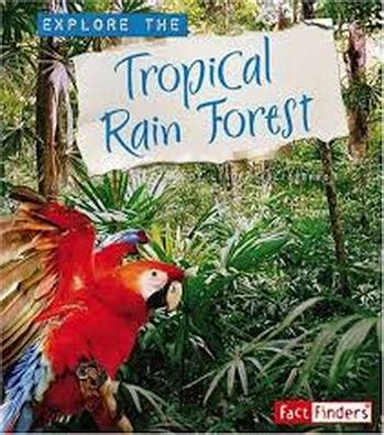 dominant plants in tropical rainforest libby s biome project tropical forest biome