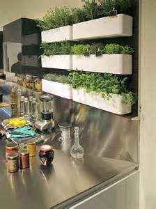 indoor kitchen garden ideas 25 best ideas about hanging herb gardens on
