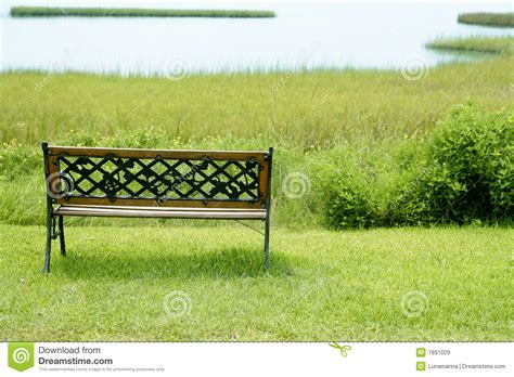 bench at the greene bench over the green grass on the lake stock image image