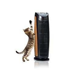 7 best air purifiers for pets reviews buying guide 2019