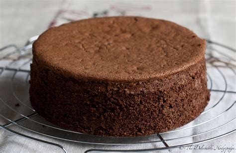 Chocolate Sponge Cake Recipe ? Dishmaps