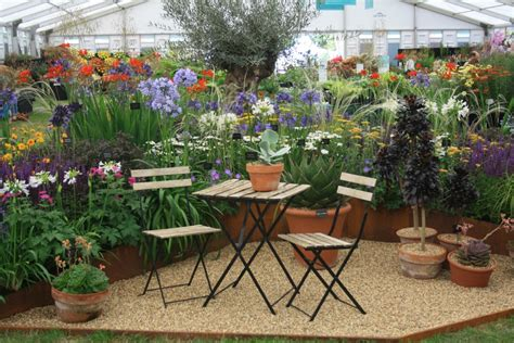 hardys cottage garden plants plant treasures from the floral marquee hton court