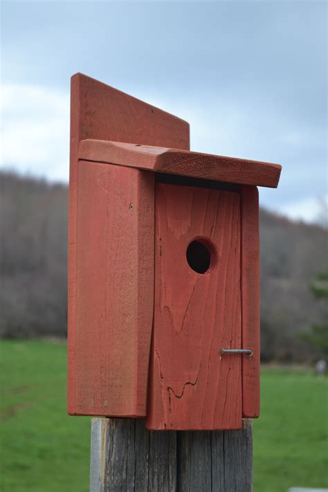 outside furniture plans wood bird houses plans free