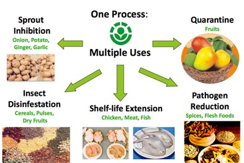 alimenti irradiati irraggiamento degli alimenti c 232 davvero da preoccuparsi