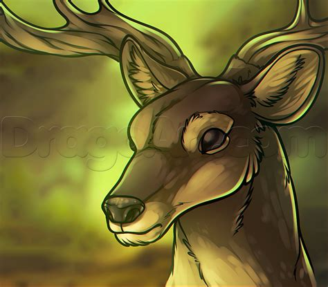 how to a deer realistic reindeer how to draw a deer draw how to a