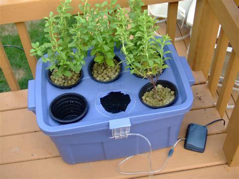 hydroponics garden greenhouse