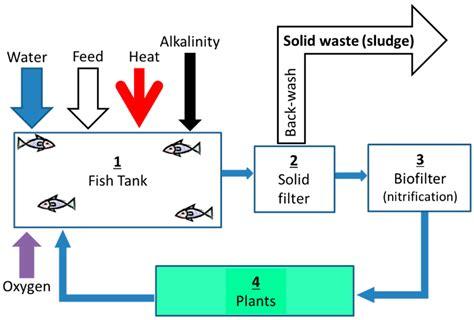 aquaponics water flow diagram aquaponic