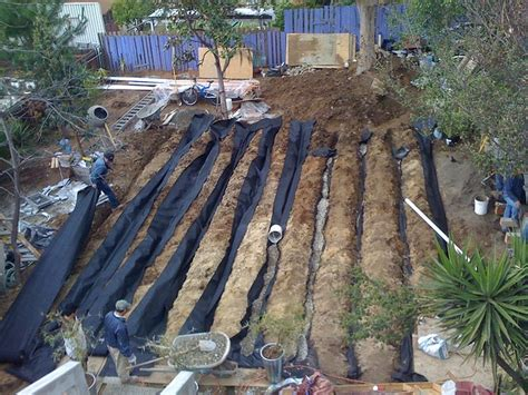 Landscape Fabric Water Absorption Leach Field System Landscape Fabric Irrigation And Plants