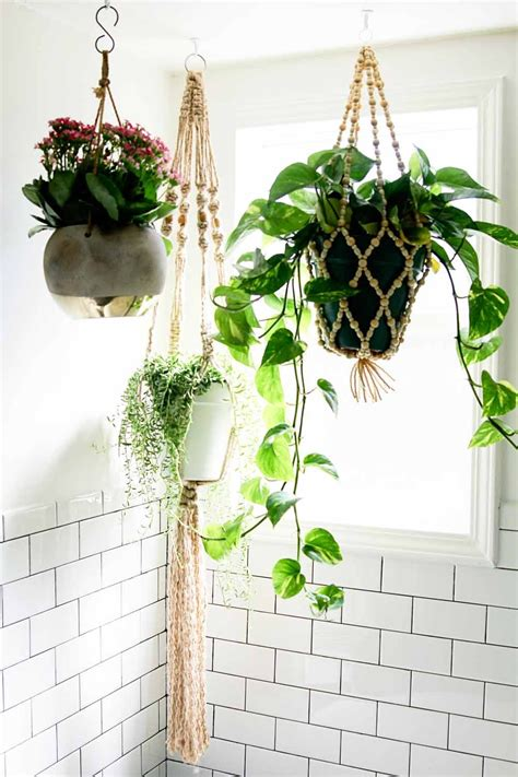 Modern Bathroom Plants Before After A Modern Bohemian Fixer In Southern