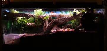 Our 55 gallon crabitat. Note the deep substrate, lots of climbing