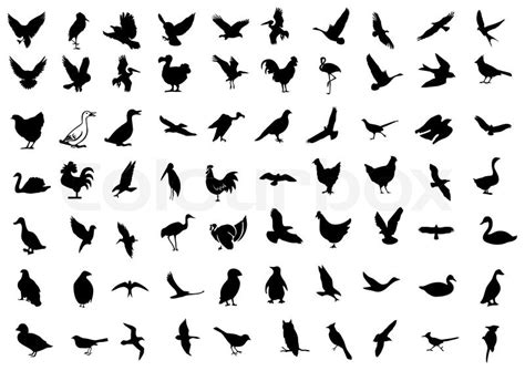 Home Plans With Prices Bird Symbol Icons Stock Vector Colourbox
